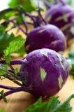 Purple kohlrabies Royalty Free Stock Photo