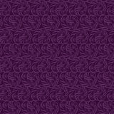 Purple lace Stock Photos