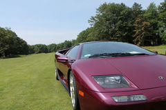 Purple lambo driving on lawn Royalty Free Stock Photo