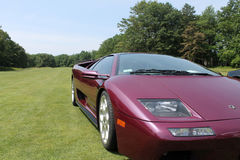 Purple lambo driving on lawn Royalty Free Stock Photography