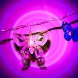 Purple lamp butterfly Stock Photos