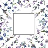 Purple lavender floral botanical flower. Watercolor background illustration set. Frame border ornament square. stock illustration