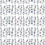 Purple lavender floral botanical flower. Watercolor background illustration set. Seamless background pattern. Purple lavender floral botanical flower. Wild stock images