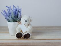 Purple lavender pots and cute teddy bears with blank paper tag royalty free stock images