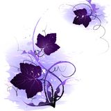 Purple leaf illustrations. A set of illustrated purple leaves and vines. These motifs are suitable for use as borders Royalty Free Stock Image
