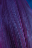 Purple leaf pattern Royalty Free Stock Images