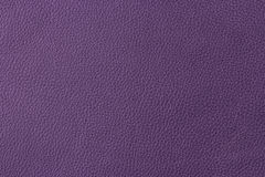 Purple leather Royalty Free Stock Image