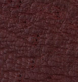 Purple leather texture or background Stock Image