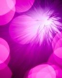 Purple lights background Stock Photography