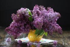 Purple lilac bouquet Stock Photography