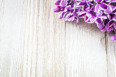 Purple lilac in corner of wooden board with room for copy Royalty Free Stock Photos