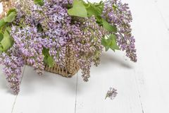Purple lilac flowers bunch in a basket on wooden table royalty free stock photo