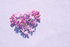 Purple lilac flowers in the shape of heart royalty free stock photos