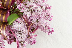 Purple lilac flowers on white fabric Royalty Free Stock Images