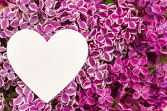 Purple lilac and a heart. As a background Stock Image