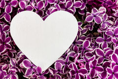 Purple lilac and a heart. As a background Royalty Free Stock Image