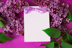 Purple lilac with invitation Royalty Free Stock Photos