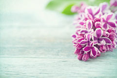 Purple lilacs on vintage blue wooden background Royalty Free Stock Photo