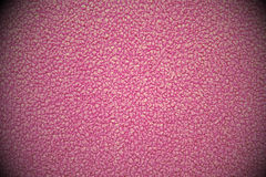 Purple linoleum texture Stock Photography
