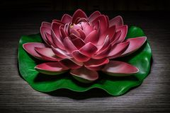 Ornamental lotus light painting Royalty Free Stock Images
