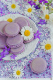 Purple macaroon Stock Photography