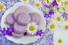 Purple macaroon Royalty Free Stock Photo