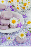 Purple macaroon Royalty Free Stock Photography