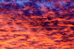 Fiery red clouded sky Royalty Free Stock Photography