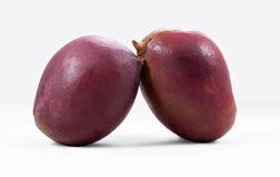 A purple mango. Mango on a white background Stock Photo