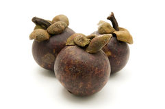 Purple Mangosteen Royalty Free Stock Photography