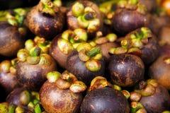 Purple mangosteen Royalty Free Stock Photo