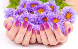 Purple manicure and flowers Royalty Free Stock Images