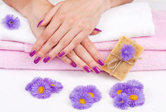 Purple manicure with flowers and herbal soap royalty free stock photo