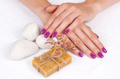 Purple manicure and herbal soap Royalty Free Stock Photo