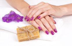 Purple Manicure, Herbal Soap, Flowers Stock Image