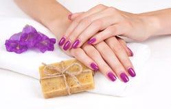 Purple manicure, herbal soap, flowers Stock Image
