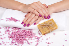 Purple manicure, herbal soap, stones Stock Images