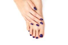 Purple manicure and pedicure. Makeup, fashion, beauty. Beautiful female legs with purple pedicure and hands with purple manicure stock photos