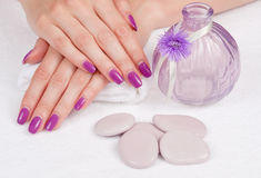 Purple manicure, stones and vase Royalty Free Stock Image