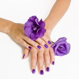 Purple manicure and violet flowers Stock Image