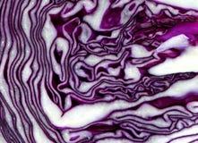 Purple maze Royalty Free Stock Photos