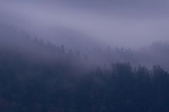 Purple Mist. Foggy clouds colored purple by the setting sun - high altitude in the Smoky Mountains Nat. Park, USA Royalty Free Stock Images