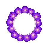 Purple Morning Glory Flower Banner Wreath. Vector Illustration.  stock illustration