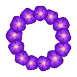Purple Morning Glory Flower Wreath. Vector Illustration.  vector illustration