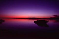 Purple na Gloed Stock Fotografie