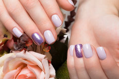Purple neat manicure on female hands on flowers background. Nail design. Purple neat manicure on female hands on a background of flowers. Nail design stock photo