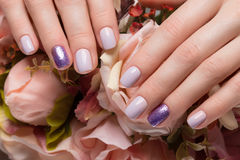 Purple neat manicure on female hands on flowers background. Nail design. Purple neat manicure on female hands on a background of flowers. Nail design royalty free stock images