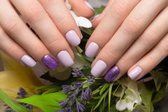 Purple neat manicure on female hands on flowers background. Nail design. Purple neat manicure on female hands on a background of flowers. Nail design stock photography