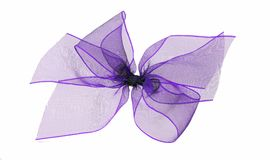 Purple net ribbon bow - isolated Stock Photo