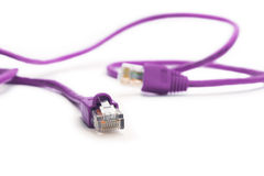 Purple network cable Royalty Free Stock Images